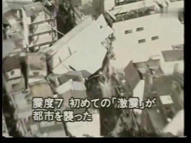 中山阪神冰柜图片