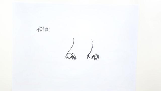 鼻子简笔画卡通