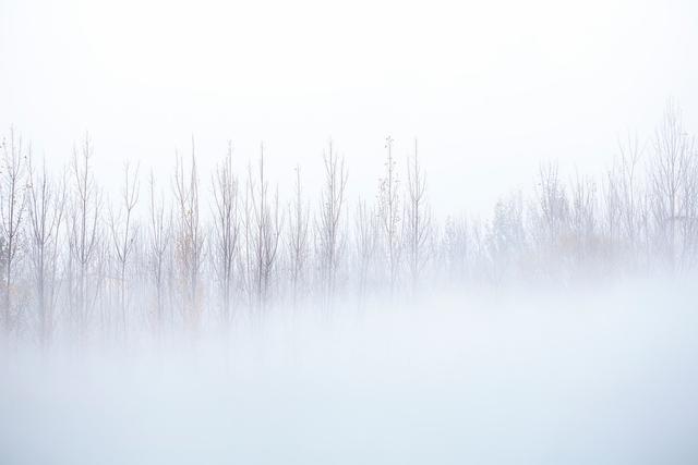 唯美二十四节气之小雪,高清图片,节日壁纸-回车桌面