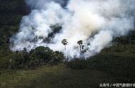 """哭泣的地球之肺:巴西亚马逊雨林正从天堂变成""""地狱""""!"""
