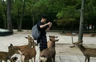 网友日本偶遇刘昊然,少年感爆棚,网友:他还是当初的那个余淮