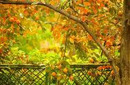 关于写《秋》的ag官网|官方,不少于1000字!要方格ag官网|官方