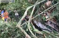 中国旅行团在老挝发生严重车祸 目前伤亡不详