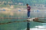 适合筏钓的目的鱼大全