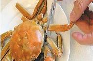 吃螃蟹有技巧,10步图解正确吃蟹方法