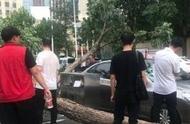 暴雨突袭,郑州一条路15辆车被砸;河南要建21个国家级强镇,中央财政支持丨大河早新闻(语音版)