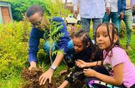 埃塞俄比亚12小时种下3.5亿棵树,或创世界纪录