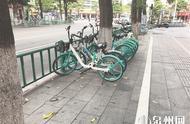 鲤城施划101处共享单车停放区 乱停放将强制清理