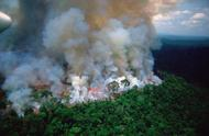"""""""地球之肺""""正面临不能承受之重 亚马孙森林大火已持续燃烧16天"""