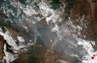 今年以来已发生74155起火灾 亚马孙森林为什么老是起火?