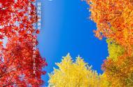 今日秋分!2019秋分具体时间是什么时候 秋分来历习俗养生饮食吃什么好 秋分后还热不热?