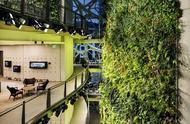 把雨林搬进办公室,砸了270多亿的亚马逊第一总部比...