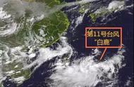 """路径南调!台风""""白鹿""""或正面袭击广东,惠州将迎大风大暴雨"""