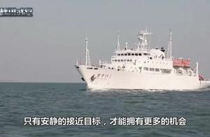 中国5000吨巨船下水,静音效果超强,方圆20米鱼群不受影响