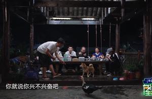 H得黄磊何炅恩宠!与彩灯巅峰对决~最后胜利的居然是..