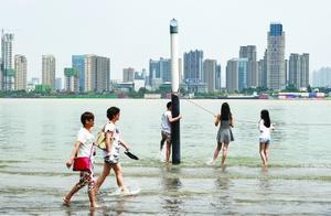 长江武汉关水位 突破25米设防线 10年来最早突破设防水位