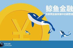 鲸鱼宝理财有风险吗?适合理财新手吗?