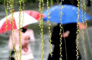 怎样写好下春雨的日记?