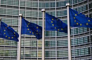 欧盟:欧洲议会选举投票结果将公布
