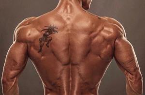 背部找不到发力感觉?练前少了这2个环节,教你科学有效训练背部