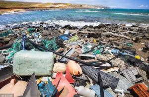 澳洲旅游胜地变成垃圾场,超4亿件垃圾堆积!保护海洋刻不容缓!