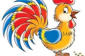 一只母鸡的故事告诉你:中国股市的水有多深?看懂的没一个是穷人