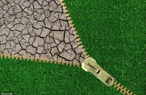 """农村良田变""""荒地""""的罪魁祸首:中国2亿亩以上的耕地受严重污染"""