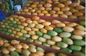菲律宾滞销的200斤芒果?中国人能够分分钟解决