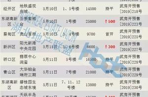 武汉楼市入夏,开盘价格普涨,日光盘减少,购房者不买账?