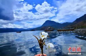 """泸沽湖的""""水性杨花""""美爆了,但我只想问怎么吃……"""