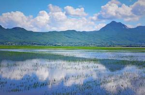 丽江最坑的那些景点,去过丽江的人必定中招,你去过几个?