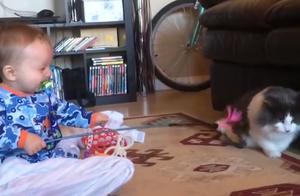 国外宝宝和猫咪玩耍,下一秒猫咪的举动,让全家人都看愣了!