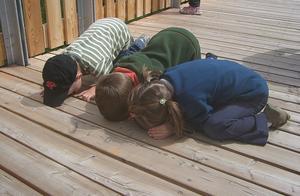 """英利用儿童贩毒案频发,最小仅11岁,毒贩背后称他们为""""骡子"""""""