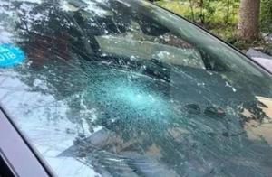 """为什么挡风玻璃被砸保险公司不赔偿?就因为你说了一个""""是""""字!"""