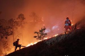 云南丽江玉龙森林火灾疑似纵火 嫌疑人已被控制