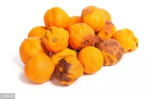 """85后夫妻 双双查出肝癌 医生告诫:这种""""水果"""" 最好扔掉"""