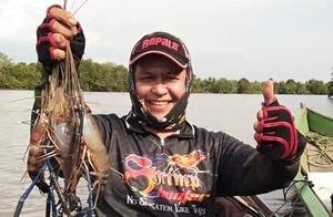 湄公河中泛滥的罗氏虾到了最肥美的时刻了,真的是太欠收拾了