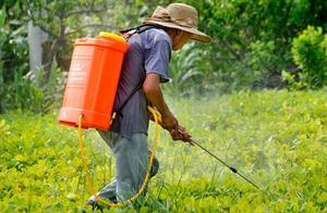 农药有没有保质期,会过期吗?过期的农药能加大药量使用吗?