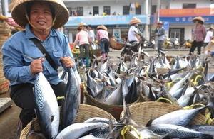 """吃鱼讲究一个字""""鲜"""",渔民:这3种鱼一般我们都不吃"""