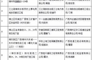 """柳州10个""""严管工程""""项目被通报!有你家新房吗?"""