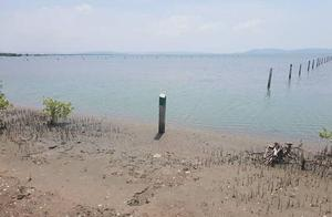 柬埔寨贡不省海域疑似非法侵占,各方据理论战不休