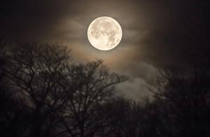 月亮对于人类的生活是不可或缺的吗?