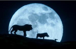 狮子王动画版豆瓣9分经典,为什么真狮版却遭遇口碑危机?