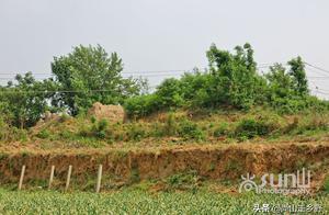 山东泰安小山村里藏古墓,墓主竟是2000多年来无人不知的他?