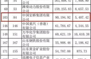 《财富》公布2019中国500强 滨州两企业上榜!魏桥排名103位