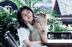 男女抱狗姿势大不同:张子枫抱出了「最优雅的狗狗」