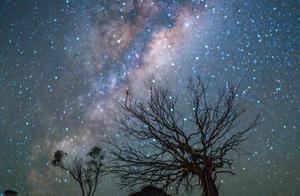 隐秘之地的满天繁星,澳洲秘密花园