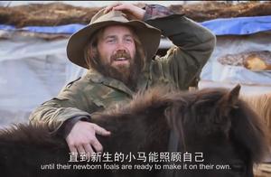 摩根熬过了漫长的冬天,他的冰岛马,也平安度过寒冷的冬季