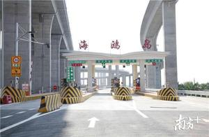 """南沙大桥海鸥岛站明日正式开通,超美的""""音符""""式立交桥感受一下"""