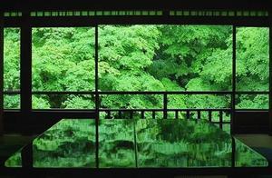 日本摄影师拍下了夏天的京都,满足了很多人对日本的幻想!